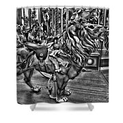 Carousel  Black And White Shower Curtain
