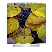 Carpet Of Gold Shower Curtain