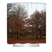 Carpeted Shower Curtain
