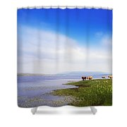 Carrowmore Lake, Co Mayo, Ireland Shower Curtain