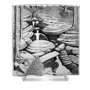 Cascade In Boulders Shower Curtain