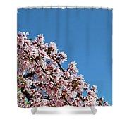 Cascade In Pink Shower Curtain