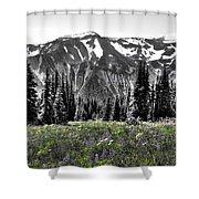 Cascade Range Meadow Shower Curtain