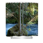 Cascade Rapids Shower Curtain