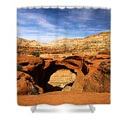 Cassidy Arch Shower Curtain