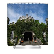 Castle Entry Shower Curtain