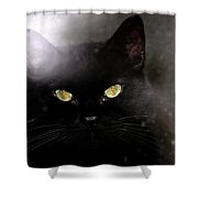 Cat Behind A Rain Spattered Window Shower Curtain