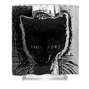 Cat Coming In Shower Curtain