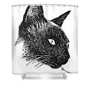 Cat Drawings 5 Shower Curtain