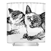 Cat-drawings-siamese-2 Shower Curtain