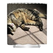Cat Got Your Tongue Shower Curtain