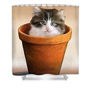 Cat In A Pot Shower Curtain