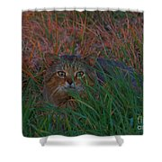 Cat In The Grasses Shower Curtain