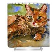 Cat King Shower Curtain