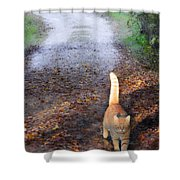 Cat On The Road Again Shower Curtain