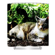Cat Relaxing In Garden Shower Curtain