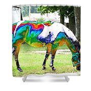 Catch A Painted Pony Shower Curtain
