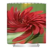 Category 5 Shower Curtain