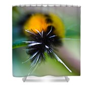 Caterpillar In Abstract Shower Curtain