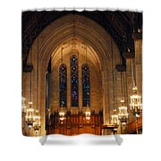 Cathedral In Chicago Shower Curtain
