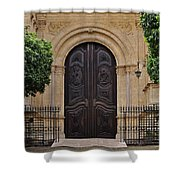 Cathedral Of Malaga Shower Curtain