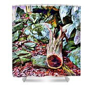 Catoctin Cliff Trail Shower Curtain
