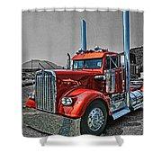 Catr0395-12 Shower Curtain