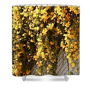 Cat's Claws Vine Shower Curtain
