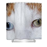 Cats Eyes Multi Colored Shower Curtain