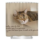 Cats Protecting You From Gnomes - Lily The Cat Shower Curtain