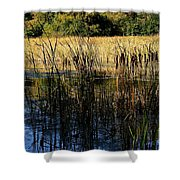Cattail Duck Cover Shower Curtain
