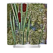 Cattails Along The Pond Shower Curtain
