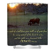 Cattle On A Thousand Hills Shower Curtain