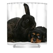 Cavalier King Charles Spaniel And Rabbit Shower Curtain