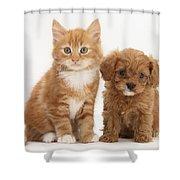 Cavapoo Puppy And Kitten Shower Curtain