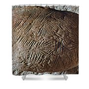 Cave Art: Incised Rock Shower Curtain