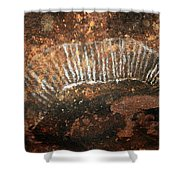 Cave Painting Of A Witchittey Grub Shower Curtain