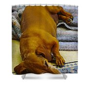 Cb Lazy July Afternoon Shower Curtain