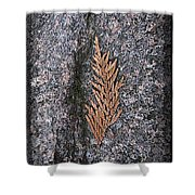 Cedar On Granite Shower Curtain