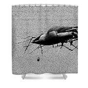 Cedar Waxwing - Bird - Enhanced Shower Curtain