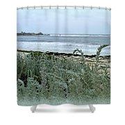 Celadon Seascape Shower Curtain