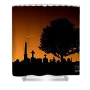 Cemetery And Tree Shower Curtain