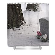 Cemetery In Winter Shower Curtain