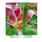 Central Park Lily Shower Curtain