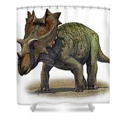 Ceratops Montanus, A Prehistoric Era Shower Curtain