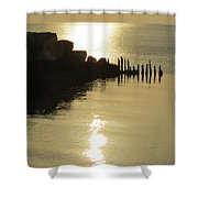 Champagne Glow Shower Curtain