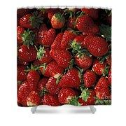Chandler Strawberries Shower Curtain