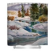 Changing Seasons Shower Curtain