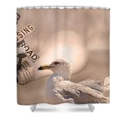 Chapter Nineteen  Shower Curtain