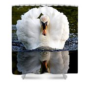 Charging Swan Shower Curtain